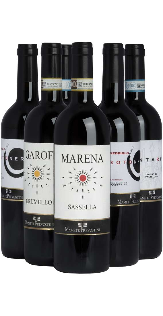 Selection 6 Valtellina Wines