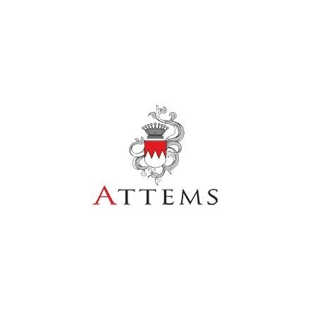 ATTEMS
